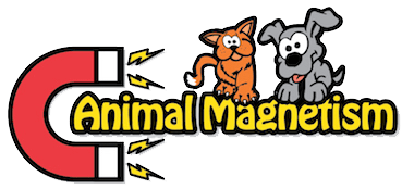 Animal Magnetism Pet Professionals