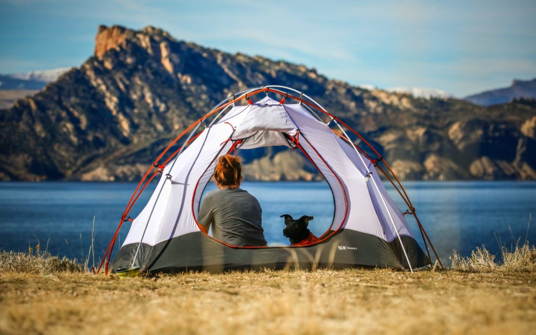 A Quick Guide to Camping in Los Angeles with Fido