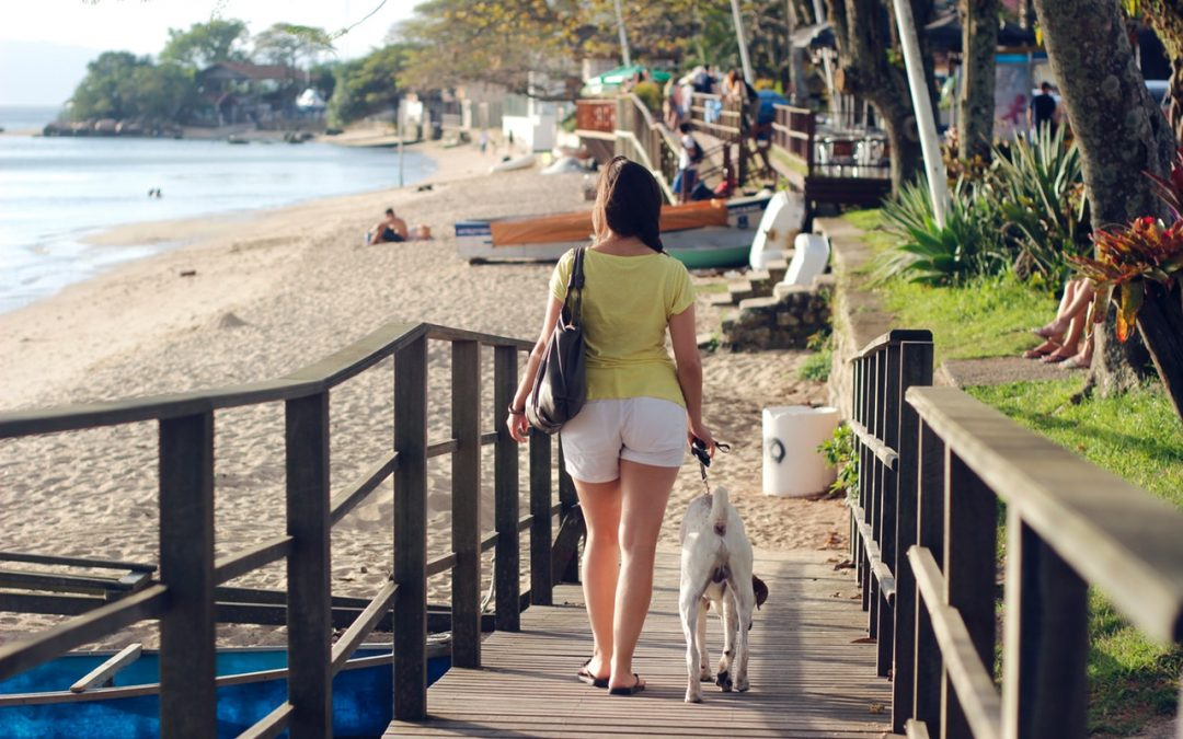 The Best Dog-Friendly Areas to Live in Los Angeles