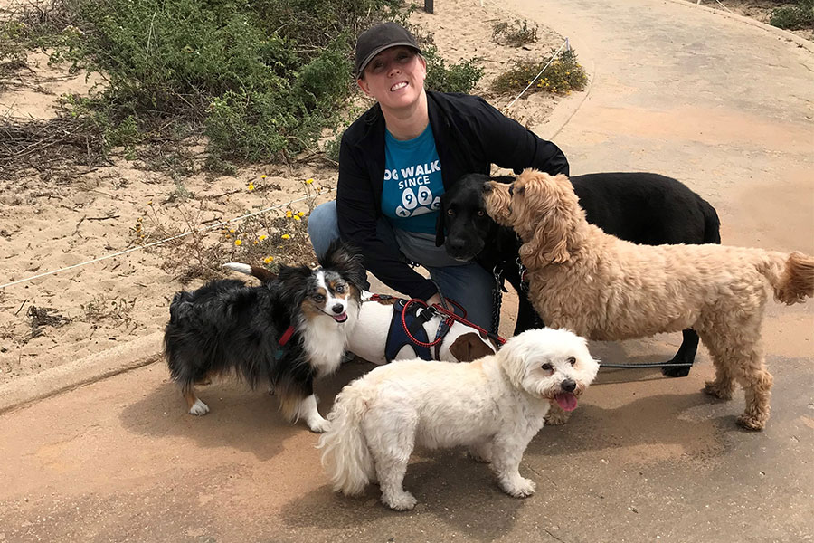 What are the Benefits of Pack Dog Walking in Los Angeles?